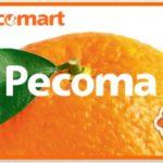 電子マネーPecoma(ペコマ)カード